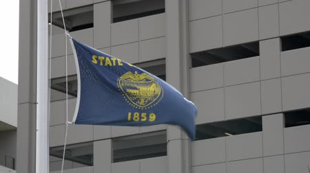 The State of Oregon flag billowing in in strong winds with a building in the background. Wideo