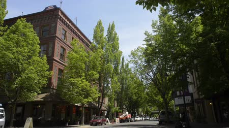 MCMINNVILLE, OREGON JUNE 06 2017, the McMenamins Hotel Oregon, and other buildings along downtown 3rd street. Cars drive by and pedestrian traffic walk in front of camera and across the street. Stok Video