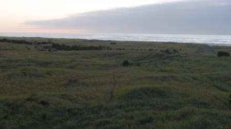 Looking over an expanse of beach grass, a trail going through it it, and the beach and ocean at sunset in Long Beach, Washington