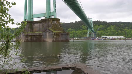 At the edge of the water underneath the St Johns bridge across the Willamette river on an overcast day in Portland, Oregon. Ducks on the water in the foreground,