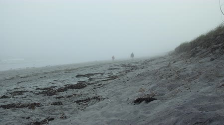 A Beach in Maine on a foggy day, people walking in the distance. Wideo