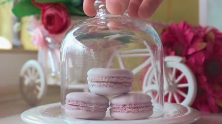 apetitoso : Pink french macarons, soft focus background. Sweet desert in the local cafe.