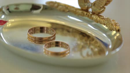 bearer : Wedding rings and rose. Jewelry and rings Stock Footage