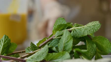 fodormenta : Mint sprigs on a table. Fragrant mint leaves