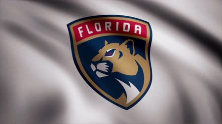 panthers : Close-up of waving flag with Florida Panthers NHL hockey team logo, seamless loop. Editorial animation