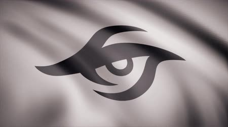 counter strike : Animation of flag with symbol of Cybergaming Team Secret. Editorial animation