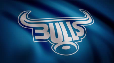bulls balls : Animation of flag with symbol of Rugby Bulls. Editorial animation