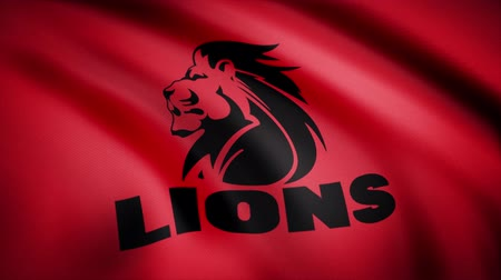 rúgbi : Waving in the wind flag with the symbol of the Rugby team the Lions. Sports concept. Editorial use only Vídeos