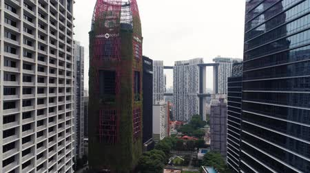Singapore - August, 2018: View of high rise office skyscrapers and private residential blocks at Tanjong Pagar vicinity. Shot. Top view of unusual natural Oasia hotel, which stands out against backdrop of modern skyscrapers. Concept of connection of natur