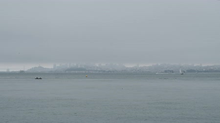 Foggy view of San Francisco skyline and San Francisco Oakland Bay Bridge with boats and birds passing by