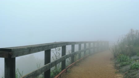 Fog and high wind rolling along a hiking trail along a wooden railing