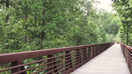 Wooden footbridge along nature hiking path with swaying trees from wind Stock Footage