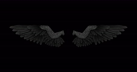 благодать : Black angel wings with an alpha channel