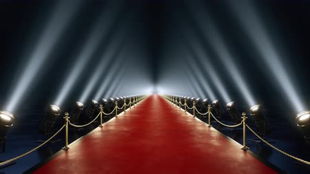 halı : Loop red carpet animation Stok Video