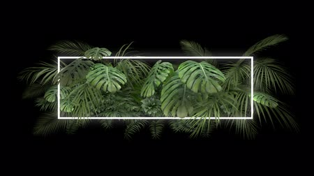 png : Tropical plant with neon light on an alpha channel
