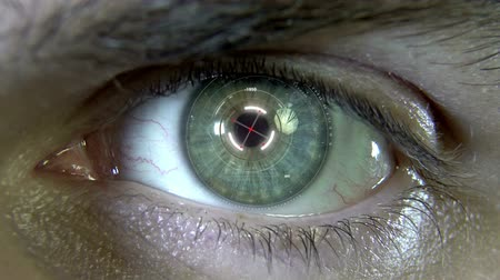 reconhecimento : Animation of the eye with holograms Vídeos