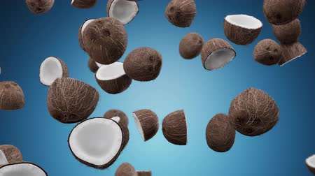 rachado : Falling coconuts on a blue background