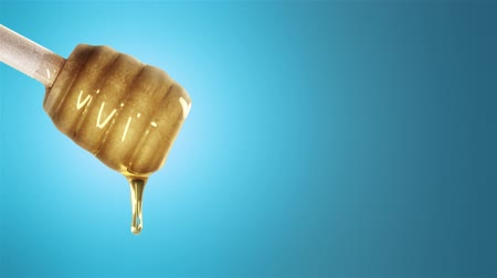 dips : Honey dripping from honey dipper on blu background Stock Footage