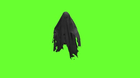 празднование : Flying black Ghost on an green screen Стоковые видеозаписи
