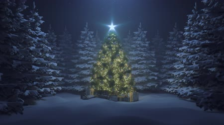 празднование : Christmas tree with a shining star and a garland in the forest with falling snow Стоковые видеозаписи