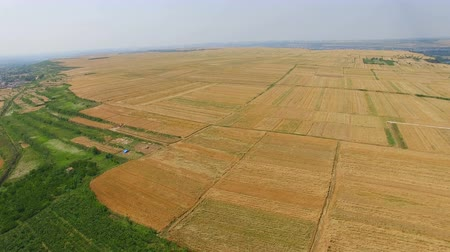 moğolistan : Aerial view of Wheat field ,Xian,China.