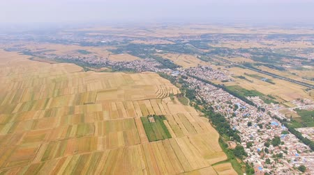 ekili : Aerial view of Wheat field and village,Xian,China.