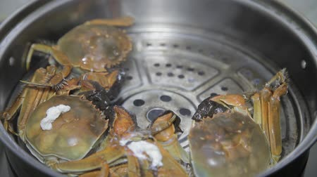 ocet : View of cooking crab in a pot ,Xian, Shaanxi, China