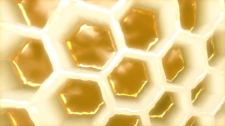 forma tridimensional : Honeycomb macro shot - 3D animation