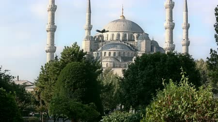 купол : Blue mosque with minarets, Istanbul, Sultanahmet park. The biggest mosque in Istanbul of Sultan Ahmed (Ottoman Empire). Стоковые видеозаписи