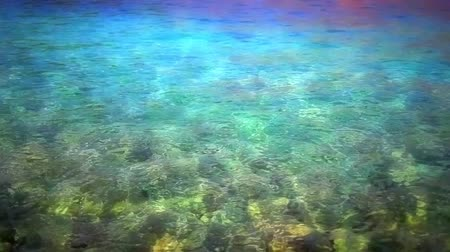 alatt : Colorful sea water surface as nice Adriatic sea background. Shallow depth with rocks under water surface.
