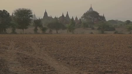 paya : Ancient stupas in the field at sunset in Old Bagan. Myanmar. Stock Footage