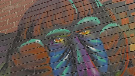 произведение искусства : MELBOURNE, AUSTRALIA - MARCH 21, 2015: Colorful graffiti in back alley of downtown, depicts an monkey profile on the corner of a building and panning to the face on the other side of the street.