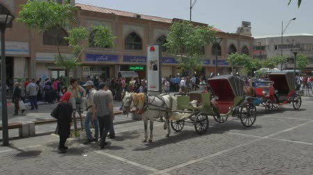 teheran : TEHRAN, IRAN - MAY 1, 2015: Market carriages waiting for another customer near the royal palace Golestan on Sabzeh meydan. Stock Footage