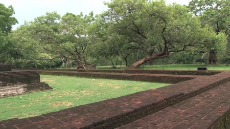 polonnaruwa : View to the ruins of the ancient city and trees in Polonnaruwa, Sri Lanka.