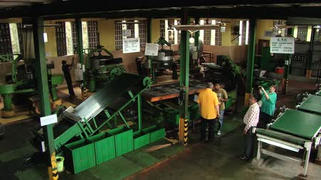 machine sous : Nuwara Eliya, Srilanka, October 23, 2013 - People visit tea factory in Nuwara Eliya, Sri Lanka. Stock Footage