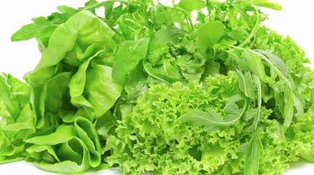 Three varieties of lettuce on white background