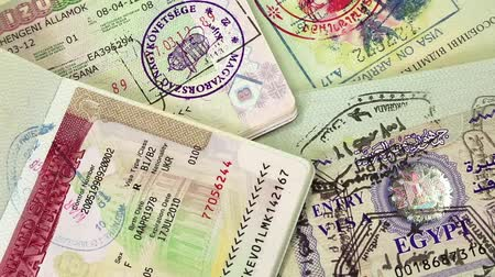 visa : Ukrainian international passports with visas (USA, Egypt, Thailand and Shengen visas)