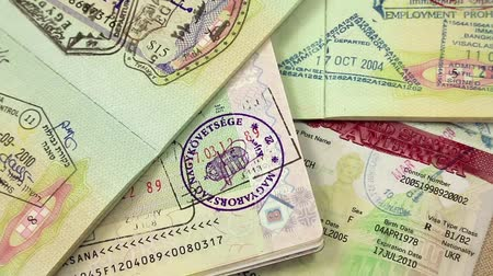 pas : International passports with visas (USA, Egypt, Thailand and Shengen visas)