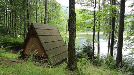 olhando a câmera : Wooden summerhouse by Synevir lake in Carpathian Mountains, Ukraine