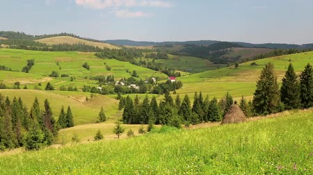 préri : Beautiful green hills and yellow fields