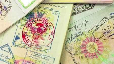 visa : KIEV, UKRAINE, AUGUST 05, 2012: International passports with visas (USA, Egypt, Thailand and Shengen visas).