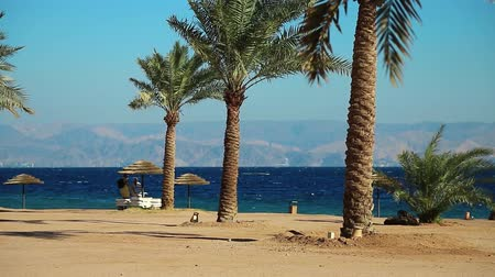 aqaba : JORDAN, AQABA, DECEMBER 10, 2016: People on the beach in tropical resort in Tala Bay, Hashemite Kingdom of Jordan. Red sea, gulf of Aqaba. View on Israel and Egypt. Palms on the picturesque beach