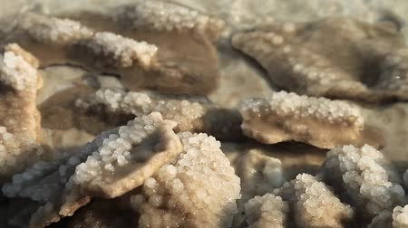 Salt on the shore of the Dead Sea in Jordan. White salt deposits of Dead Sea