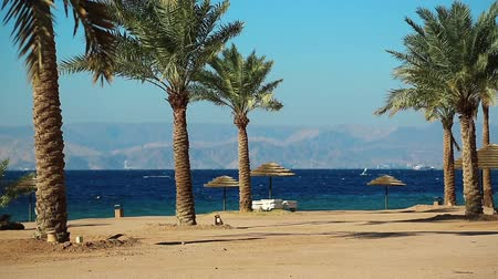 aqaba : Tropical resort in Tala Bay, Hashemite Kingdom of Jordan. Red sea, gulf of Aqaba. View on Israel and Egypt. Palms on the picturesque beach