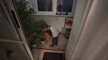 A little boy watering pots. Im trying very hard. Stok Video