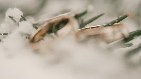 Wedding rings in the snow. macro. Stok Video