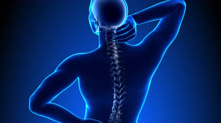 zpátky : Hurt Spine - Male Hurt Backbone - Backache Headache - Vertebrae Pain