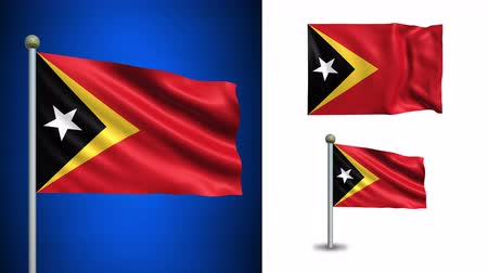 east timor : East Timor flag - 4k resolution with Alpha channel, seamless loop! Stock Footage