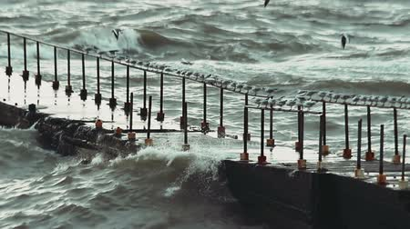 zábradlí : Video 1920x1080 - Seagulls sitting on the railing of the old pier in search of food during a storm at sea