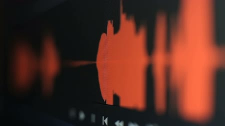 dengeleme : Audio waveform monitor macro shot